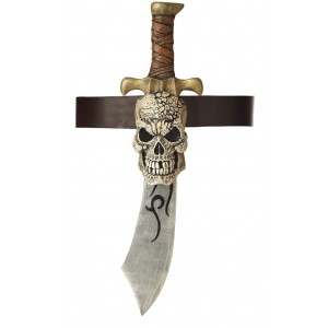 Pirate Sword and Skull Sheath