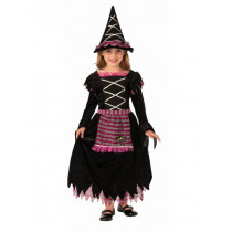 Fairy Tale Witch Costume
